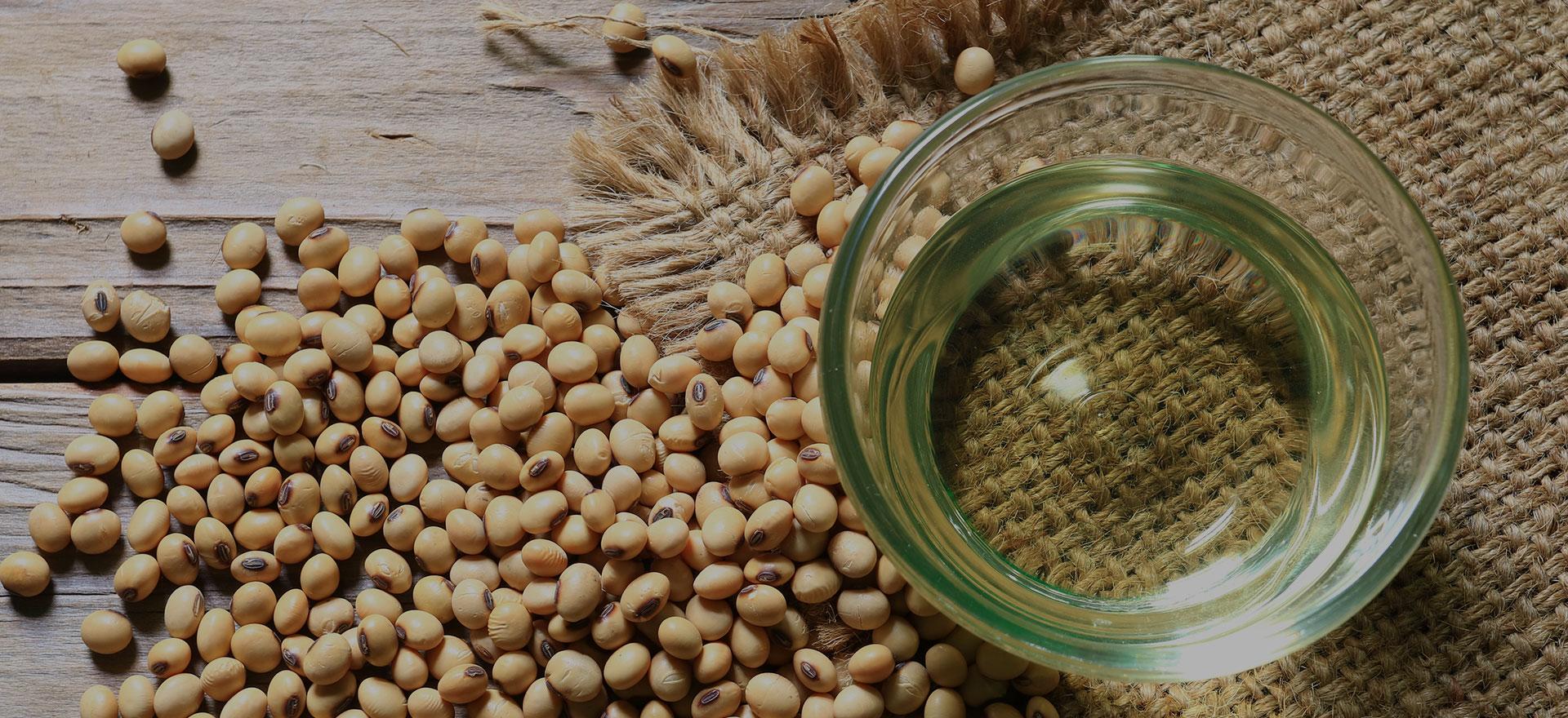 Soya Bean Refined Oil - Ganesh Oil Mill, H.P